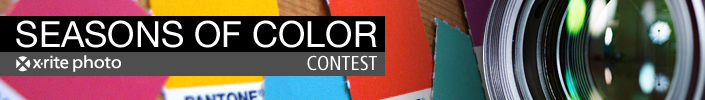 Seasons of Color Photo Contest